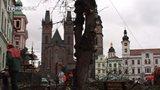 Kácení stromů na náměstí v Hradci Králové